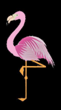 flamingo freetoedit