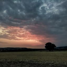 freetoedit nikond5300 photography sky clouds landscape tree mood sunrise
