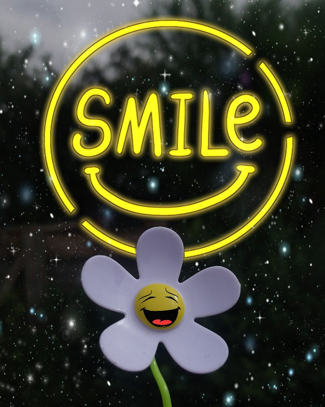 Have a fantastic day #daisy #flower #flowerpower #stickers #happiness #outandabout  #freetoedit