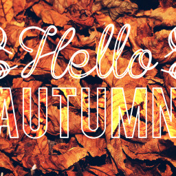 helloautumn stickers leafs outandabout warmcolor