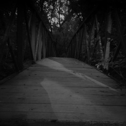 freetoedit blackandwhite bridge mysterious walkabout