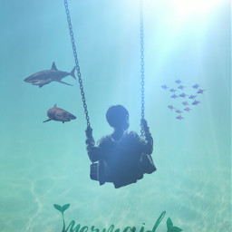 freetoedit shark fishies🐟 littleboy underwater