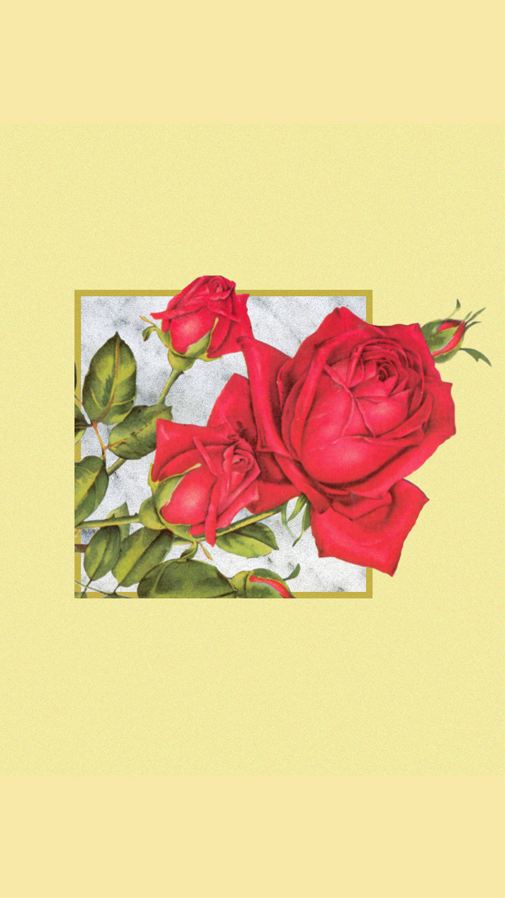 wallpaper flowers aesthetic freetoedit