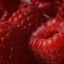 raspberries snacks photography healthyeating antioxidants freetoedit
