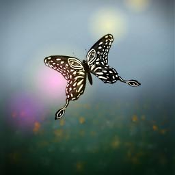 freetoedit dcbutterflies butterflies
