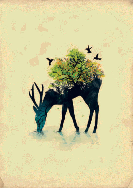 #ftestickers #deer #forest #doubleexposure
