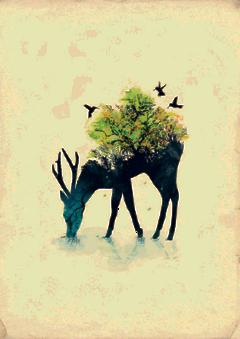 ftestickers deer forest doubleexposure freetoedit