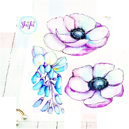 watercolor@alena_eid watercolorflower aquarelle drawing logo