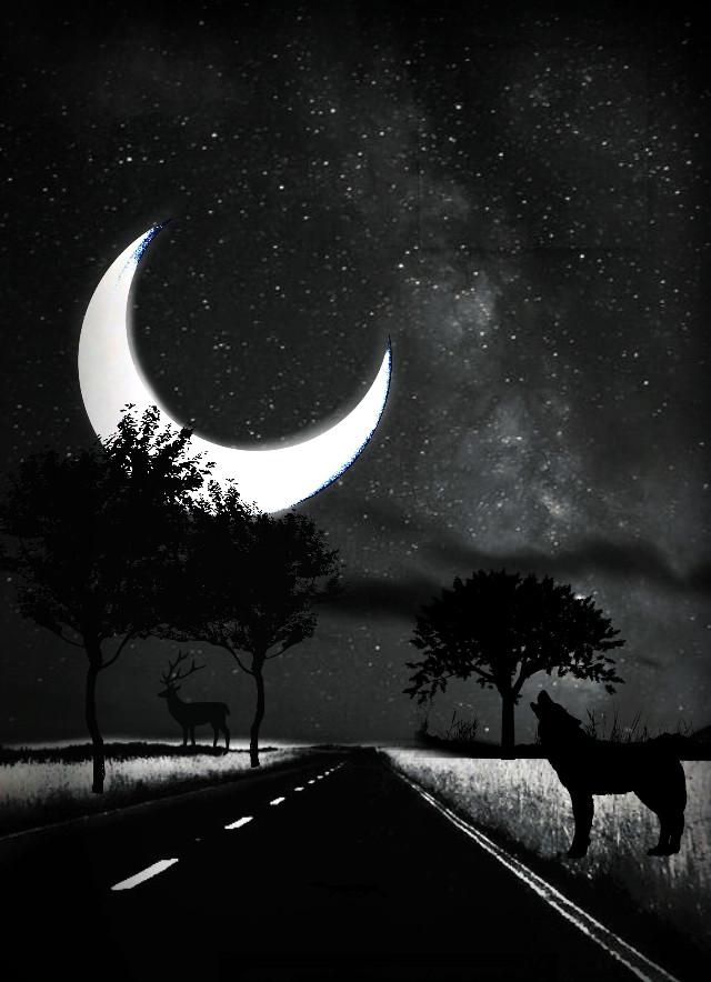 #freetoedit #background #nature #landscape #silhouettes #howlingwolf #october  #blackandwhite #picsarteffects #minimaledit #myedit #madewithpicsart