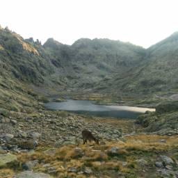 nature glacial lake mountainscape rockymountains
