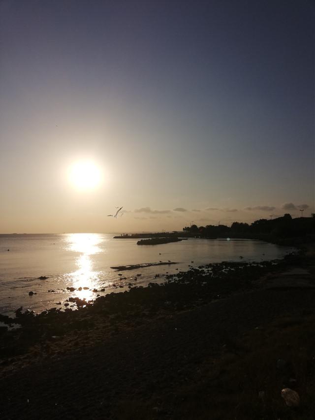 #freetoedit #sunset
