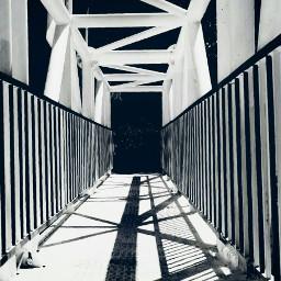 freetoedit monochrome monochromephotography monoart myphotographs