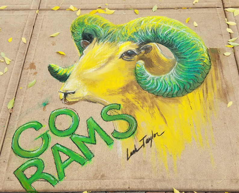 CSU Pastels for Homecoming! We took over downtown Fort Collins today!  #rams #football #csu #pastels