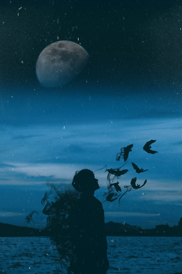 #freetoedit Dark Night 💀🌆🌙 #edit #picsart #silhouette #boy #dark #night #moon #sky #bat