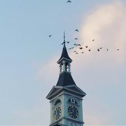 freetoedit clocktower birds clouds cityscape