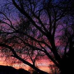 freetoedit colorfulsunset sunset purple orange pccolorfulsunsets