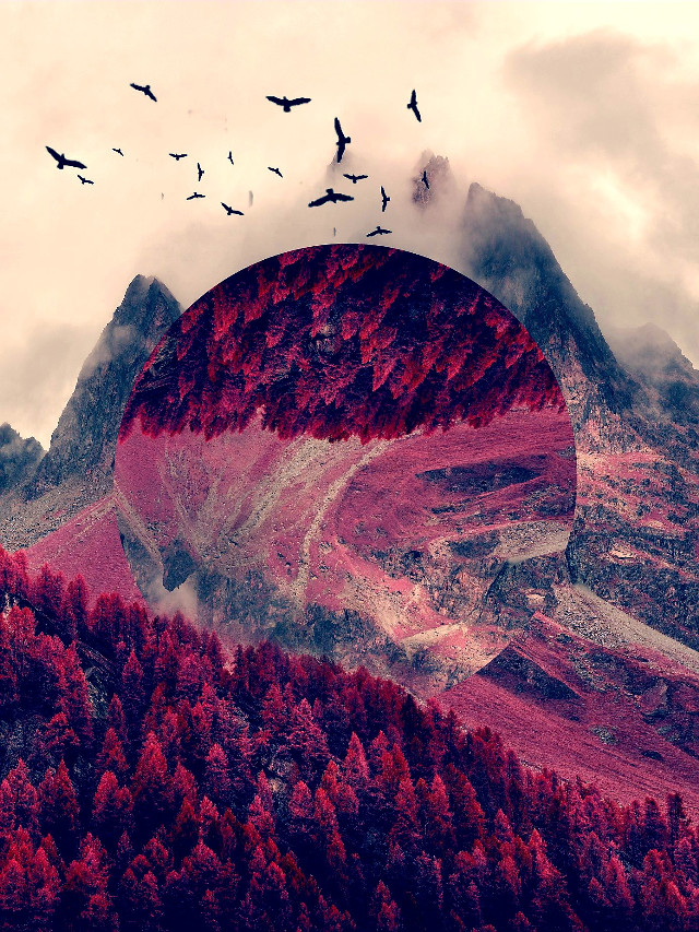 Image from @freetoedit gallery #drawtools #layers #shape #madewithpicsart #hue #forest #nature #myedit #pink