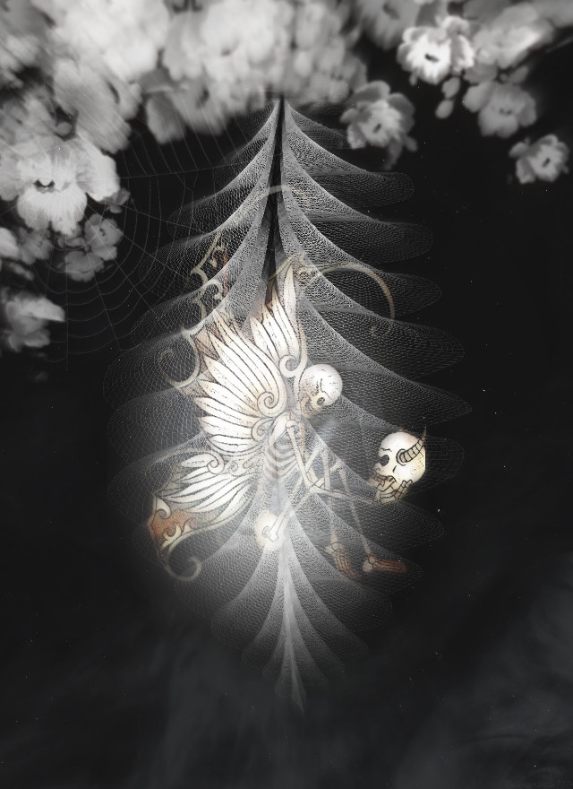 #freetoedit #cocoon #butterfly #surreal #blackandwhite #flowers  Thank you @pskill for the custom background💌  Thank you for the stickers everyone 💌