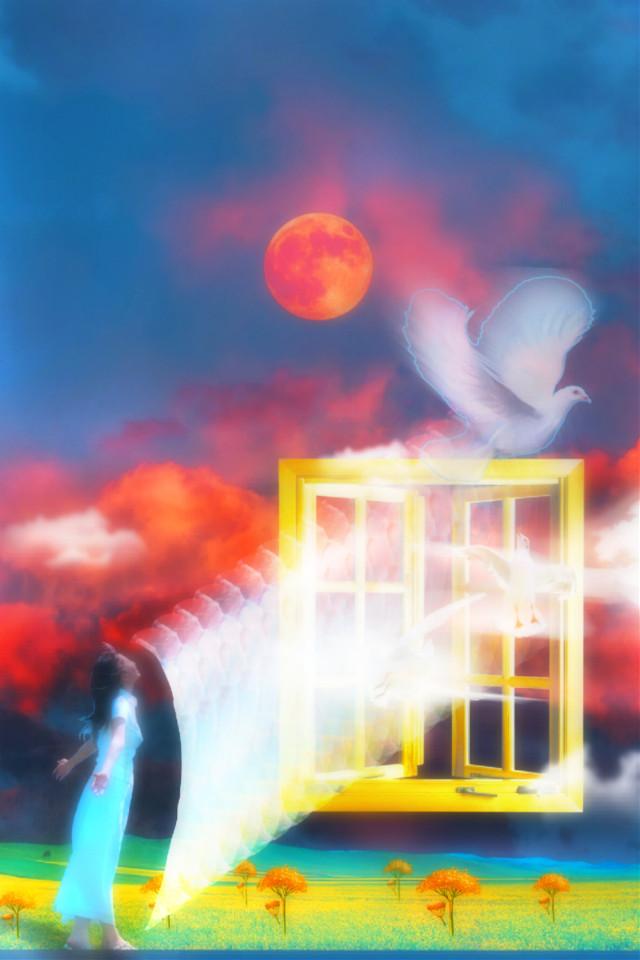 #freetoedit #woman #window #whitedoves #surrealart #surreality #portal #doubleexposure #motiontool #blureffect #picsarteffects #hue #myedit #madewithpicsart