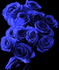 bouquet bouquetofflowers rosebouquet nice freetoedit
