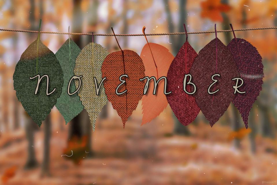#welcomenovember #november #autumn #1991 #season   #freetoedit