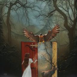 editbyme photomanipulation imagination surrealistgate fantasyart