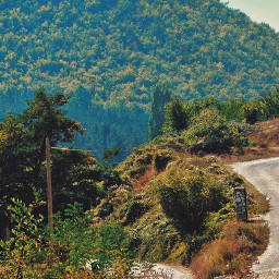 freetoedit myphotography nature road path