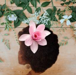 freetoedit steelmagnolias magnolia lady