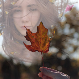 freetoedit nochallenge doubleexsposure autumnleaf