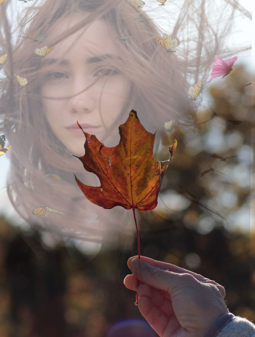 #nochallenge #doubleexsposure #freetoedit #autumnleaf