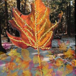 freetoedit ircautumnleaf leaf leaves autumn