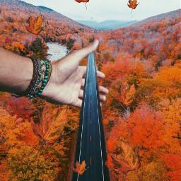 freetoedit ircautumnleaf autumnleaf