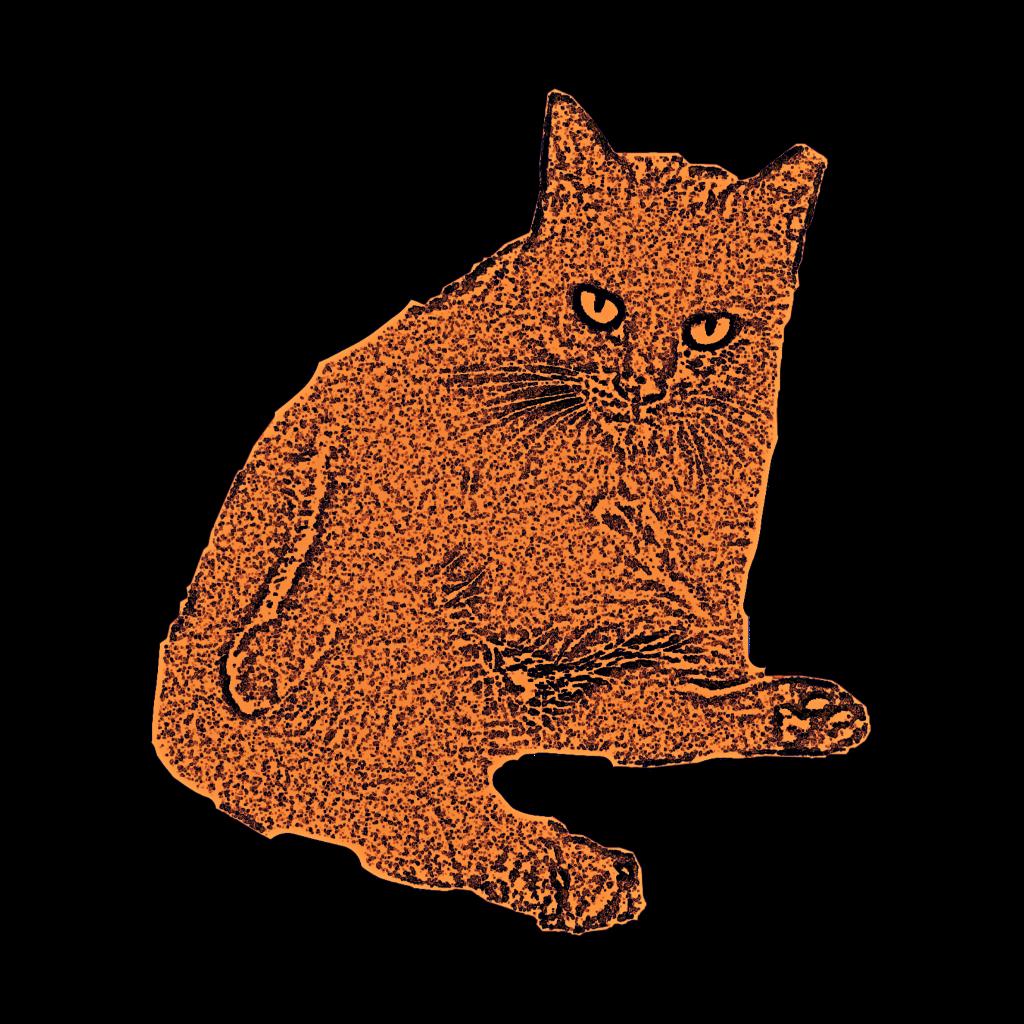 #freetoedit #kitty