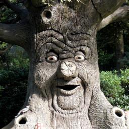 freetoedit remixme remixit treeart treetrunk