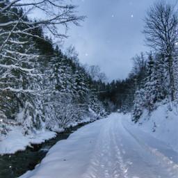 freetoedit pcwindingroads windingroads winter snow