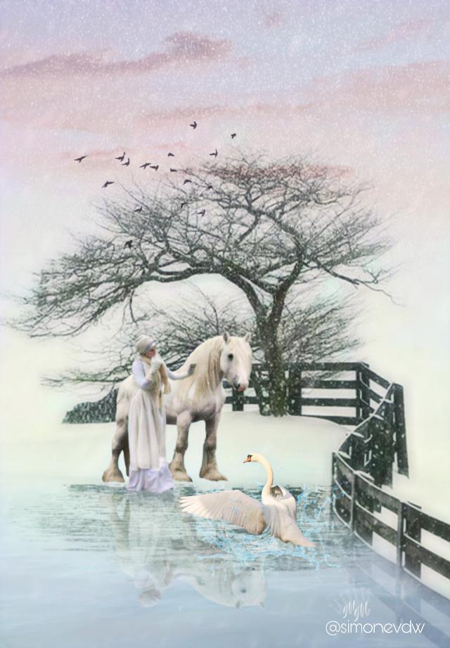 #editbyme #photomanipulation #imagination #snowday #magical #swan #mirror #art #artwork