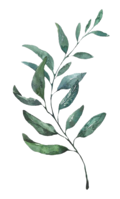 bmrs hojas freetoedit