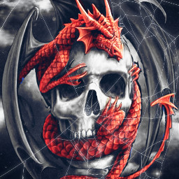dragons spiderwebs myedit