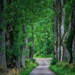 freetoedit landscape nature