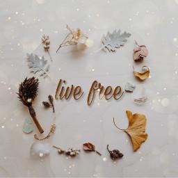 winter autumn createbyme freetoedit