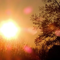 myphotography nature sunset sun sunflare freetoedit