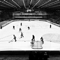 pcsportsmatch sportsmatch icehockey blackandwhite people