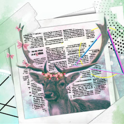 freetoedit deer kpopedits kpopbrushes collage ircdelicatedeer