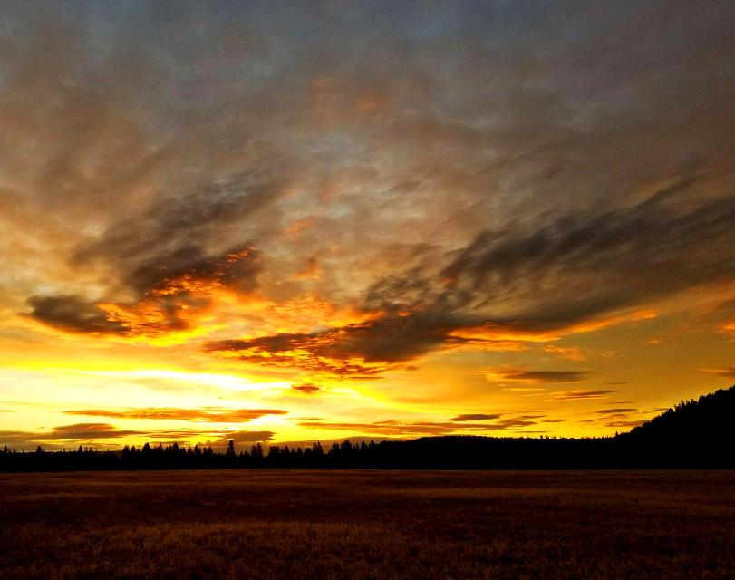 #freetoedit #sunrise #nature