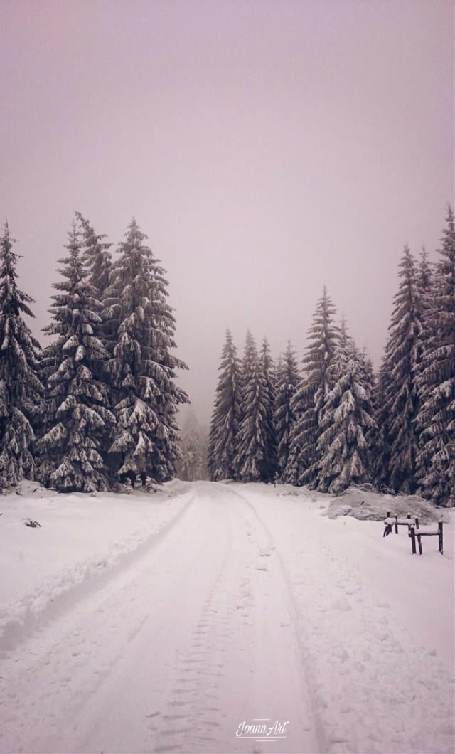 #freetoedit #winterwonderland #winter #snow #fog #nature #trees #woodland #road #forestroad #pcsnow #pcoutdoorwinter