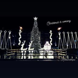 christmas2018 lovephotography christmastree