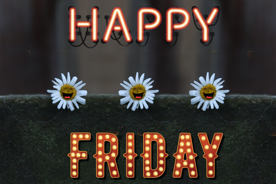 Have a fantastic funpacked Friday #daisy #flower #stickers #happiness #Friday #freetoedit