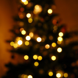 christmas christmastree christmaslights christmastime beautiful freetoedit