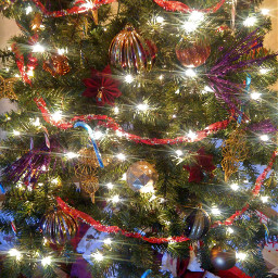 freetoedit pcchristmastrees christmastrees