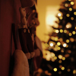 freetoedit chistmas christmaslights timewithfamily lovechristmas